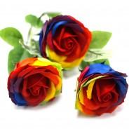 Rainbow Rose Soap in Presentation Box 4