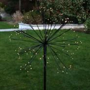 Solar Dandelion - Allium (single light) 4