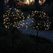 Solar Dandelion - Allium (single light) 2 Single light supplied