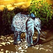 Solar Elephant 3