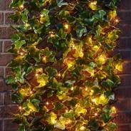 Solar In-Lit Ivy Trellis 2
