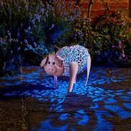 Solar Silhouette Delilah Pig 1