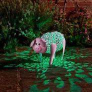 Solar Silhouette Delilah Pig 2