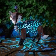Solar Silhouette Fox 2