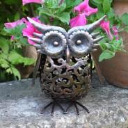 Solar Scroll Owl 2