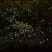 100 Cool White LED Solar Fairy Lights 1