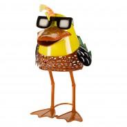 Solar Doctor Duck 5