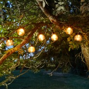Solar Boule Fairy Lights 2