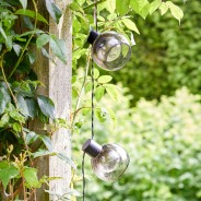 Solar Boule Fairy Lights 3
