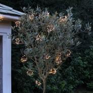 Starburst String Lights 1