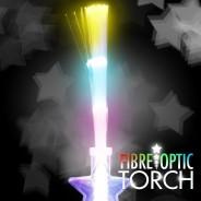 Super Fibre Optic Torch 3
