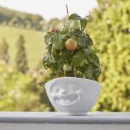 Tassen Emotion Bowls 8 Laughing Bowl