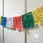 Authentic Tibetan Prayer Flags 1