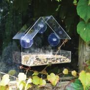 Transparent Window Bird Feeder 1