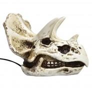 Triceratops Skull Lamp 5