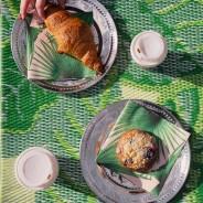 Tropical Palm Leaf Indoor /Outdoor Rug 3
