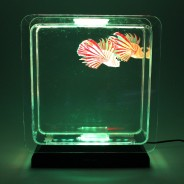 Lion Fish Tropical Mood Light 3