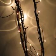 Twig Lights 5 Red/Brown Twig Lights