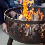 Wild Fire Fire Bowl 3
