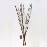 Battery Operated Willow Twig Lights 7