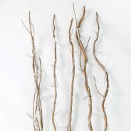 Gold Willow Twig Lights 6