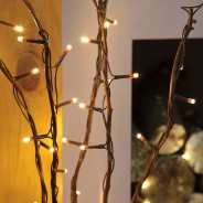 Willow Twig Lights 50 LED 3