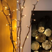 Willow Twig Lights 50 LED 2