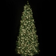 2000 Warm White Treebrights with Timer