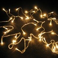 40 LED Warm White Fairy Lights (17495)