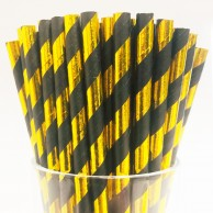 Black & Gold Biodegradable Paper Straws