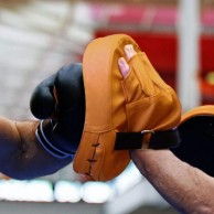 Boxing Pads - Focus Mitts
