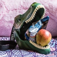 Dinosaur Lunch Box and Storage Case