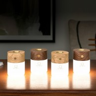 Gingko Smart Diffuser Light