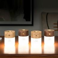 Gingko Smart Diffuser Light