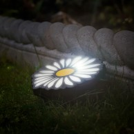 Set of 4 Solar Daisy Lights