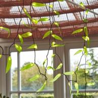 Solar Leaf Fantasy