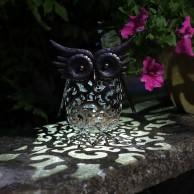 Solar Scroll Owl