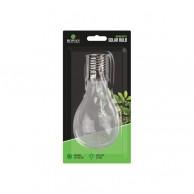 Solar Clear White LED Bulbs