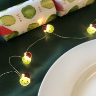 Sprout String Lights