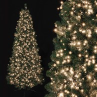 750 Warm White Treebrights with Timer