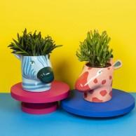 Wild Animal Plant Pots