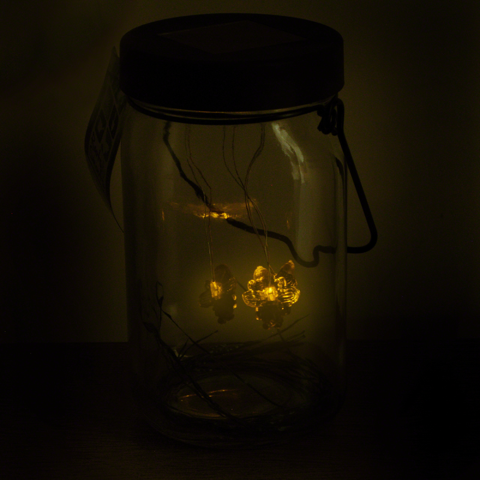 Click to view product details and reviews for Glass Firefly Solar Lantern.