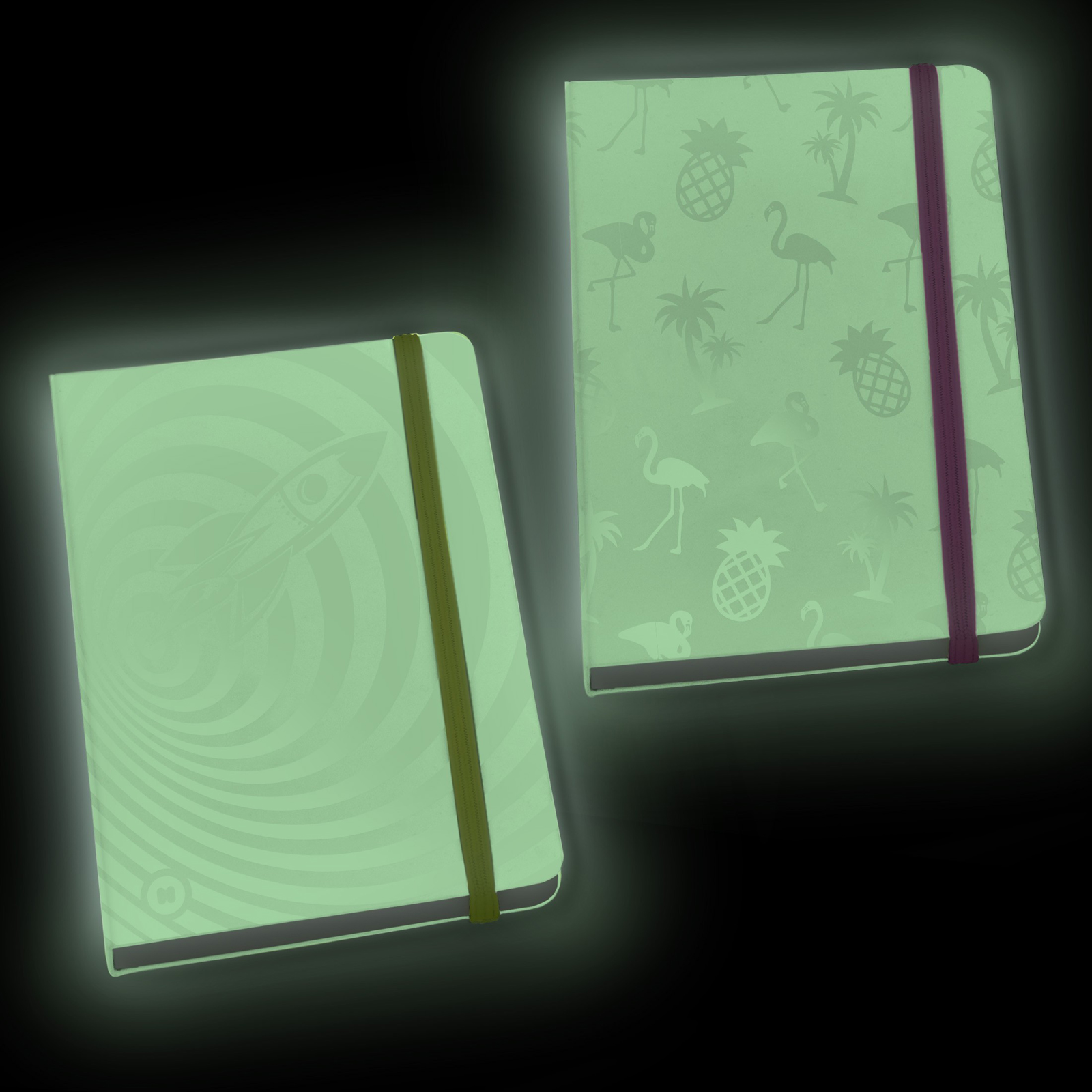 Click to view product details and reviews for Glow In The Dark Notebook.