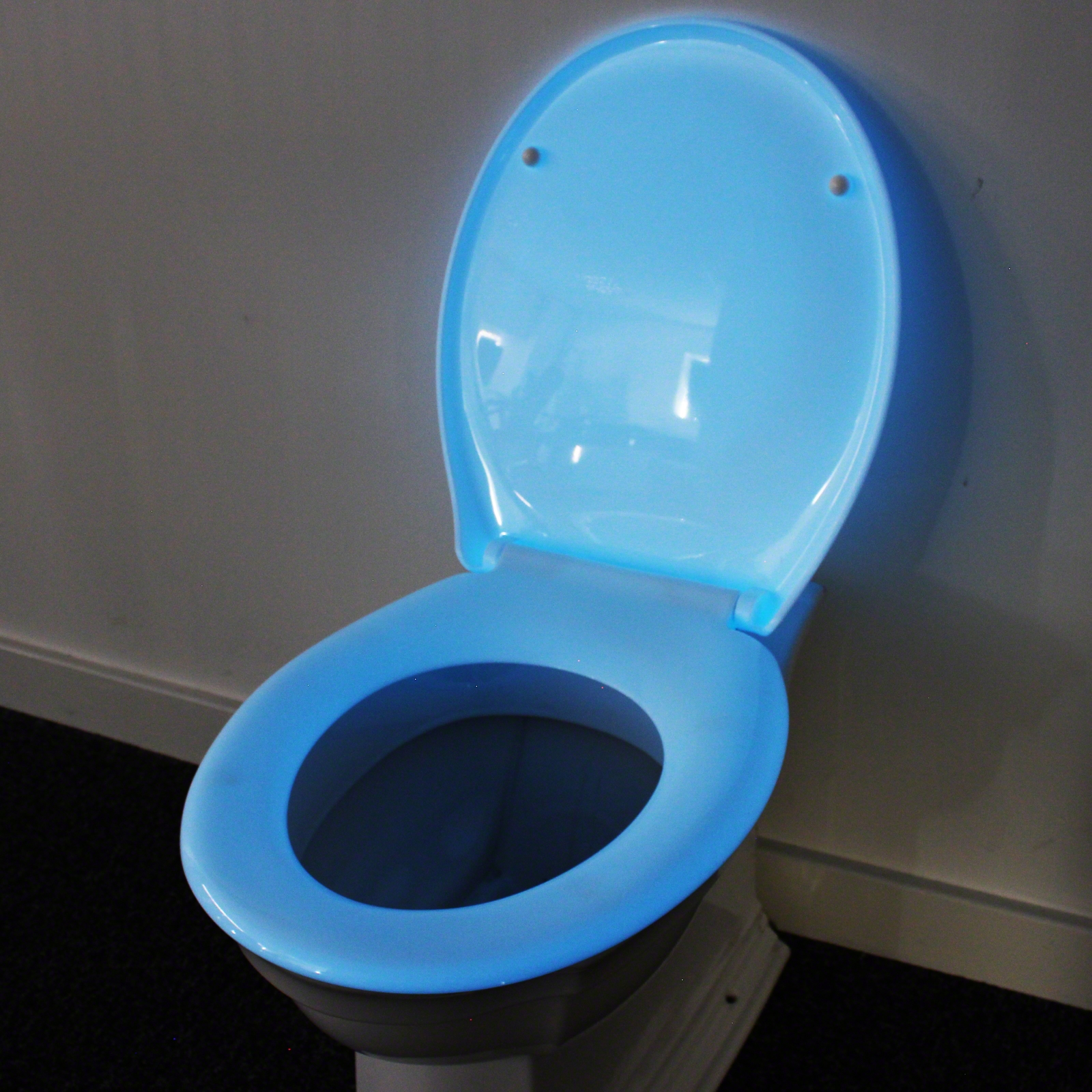 Click to view product details and reviews for Glow In The Dark Toilet Seat.