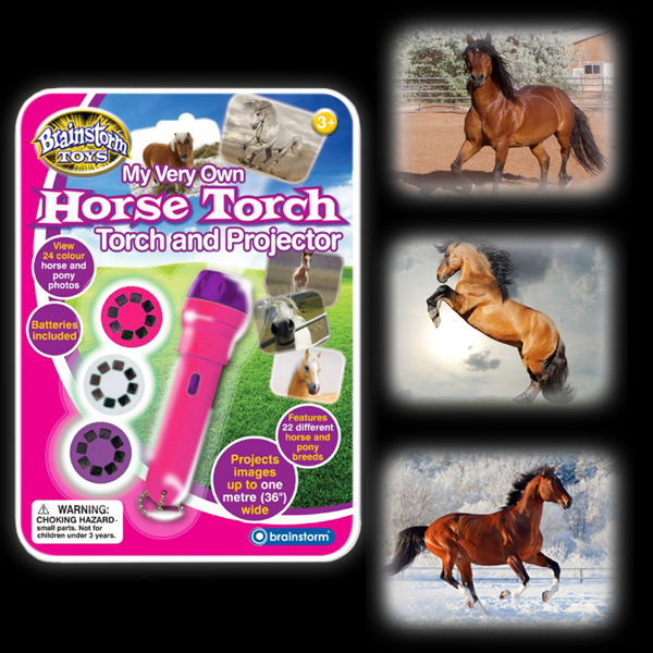 Horse Torch And Projector