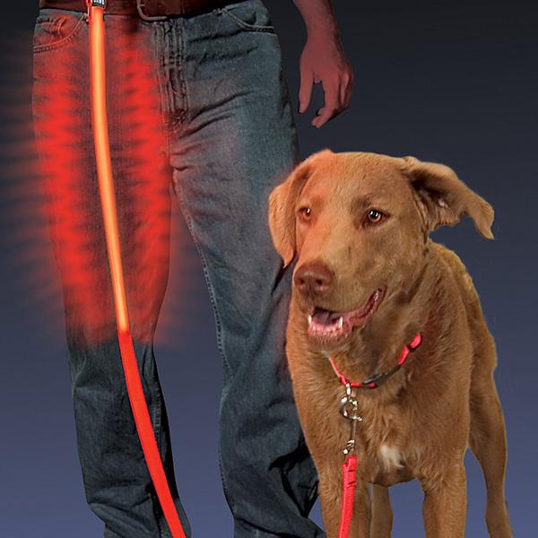 Light Up Dog Lead Night Dawg