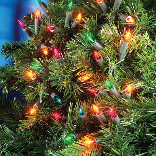 Click to view product details and reviews for 100 Fairy Lights.