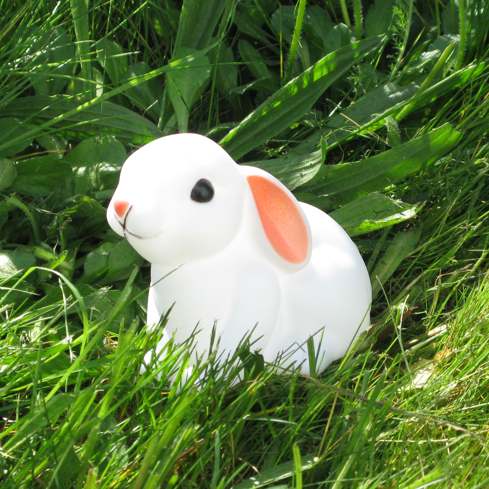 Click to view product details and reviews for Little Baby Bunny Nightlight.