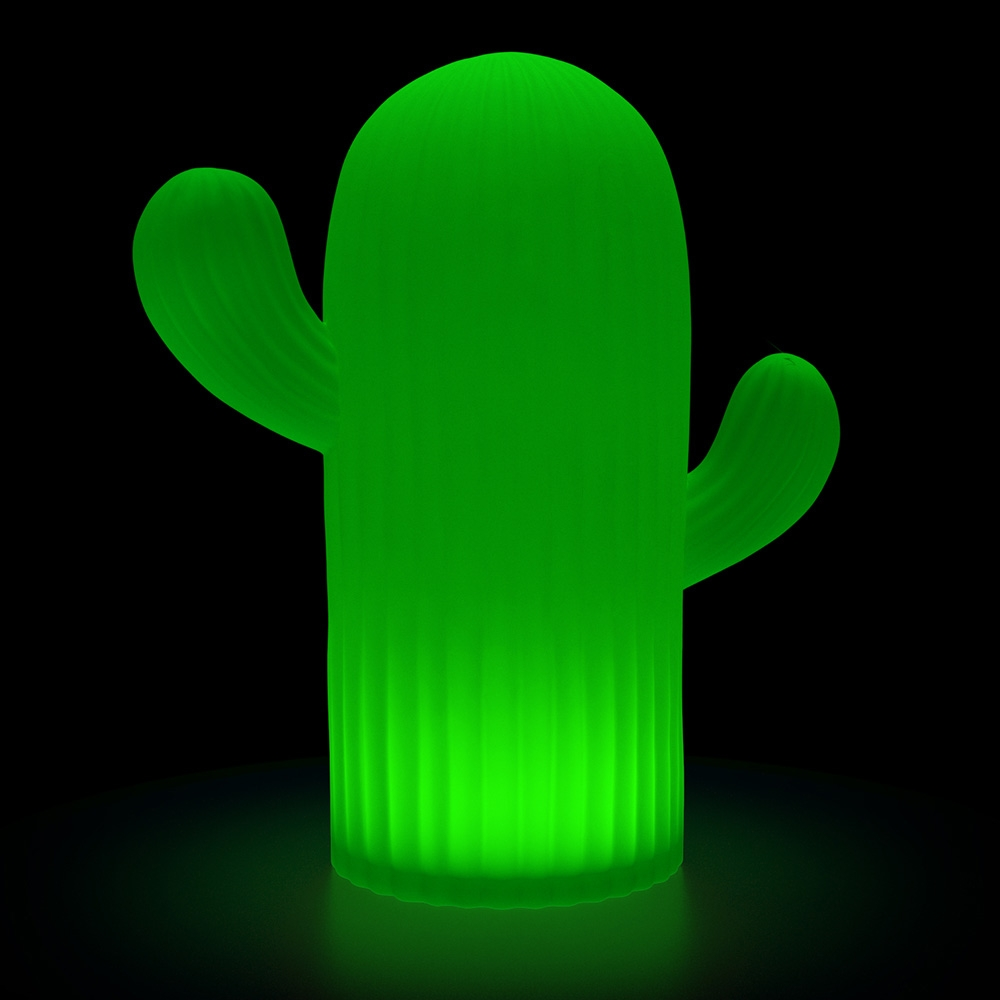 Click to view product details and reviews for Large Solar Cactus Mood Light.