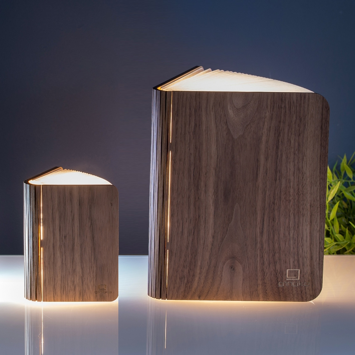 Click to view product details and reviews for Gingko Smart Book Usb Rechargeable Light.